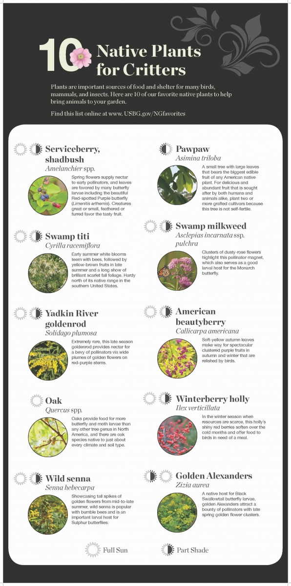 national garden native plant recommendations